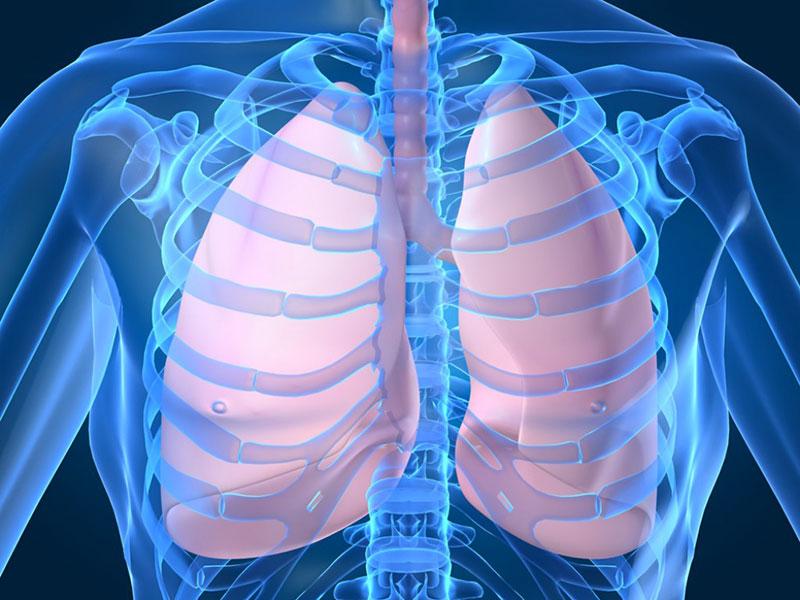La Legionella: un batterio mortale che devasta i polmoni