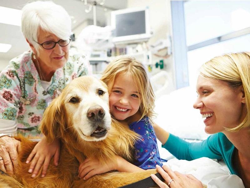 Careggi investe sulla Pet Therapy!
