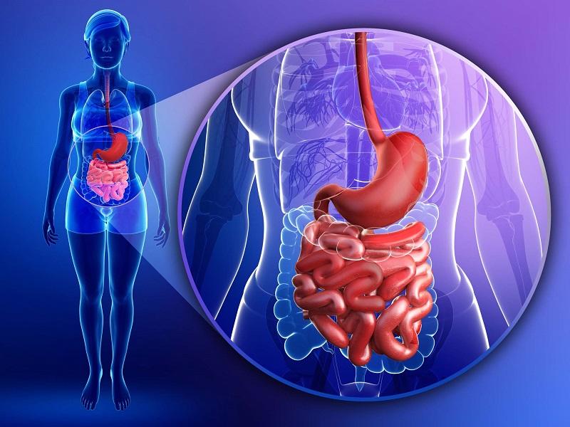 Morbo di Crohn: segni, sintomi, diagnosi e cura