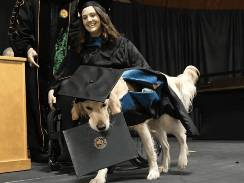 Aiuta ragazza disabile a studiare: laurea ad honorem al cane!
