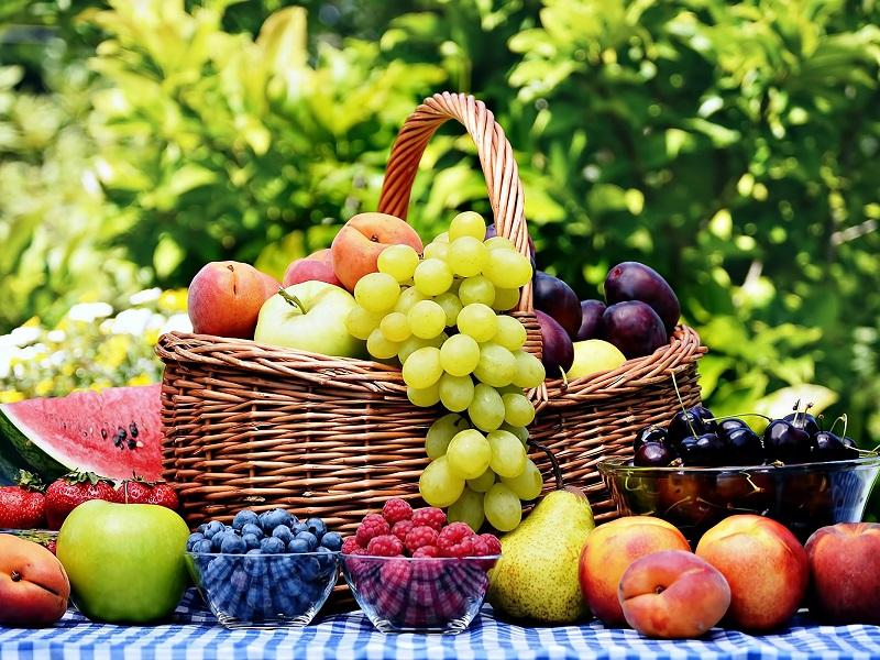 Alimentazione: frutta fresca insostituibile! Integratori e barrette KO.
