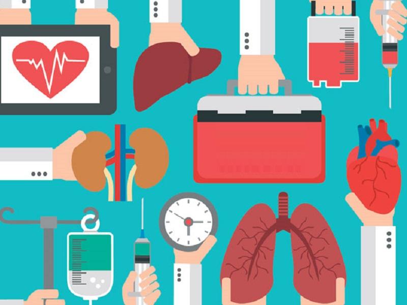 Trapianto: quanto costano gli organi più usati?
