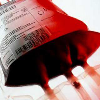 Trasfusione: le fasi del processo di trapianto di emoderivati.