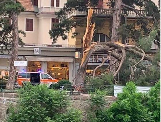 Cade albero su turisti, la fuga disperata di medici e infermieri per salvarli.