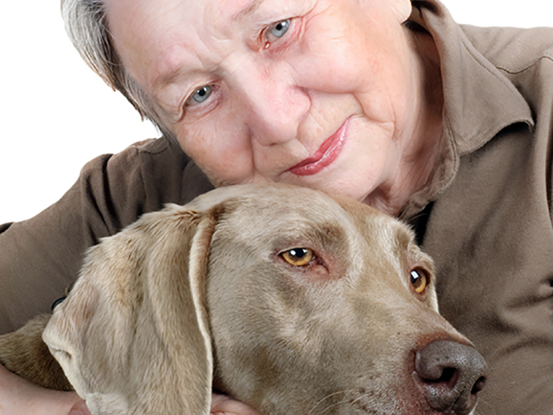 OSS salva cane di paziente con Alzheimer, i figli avevano abbandonato l'animale a se stesso.