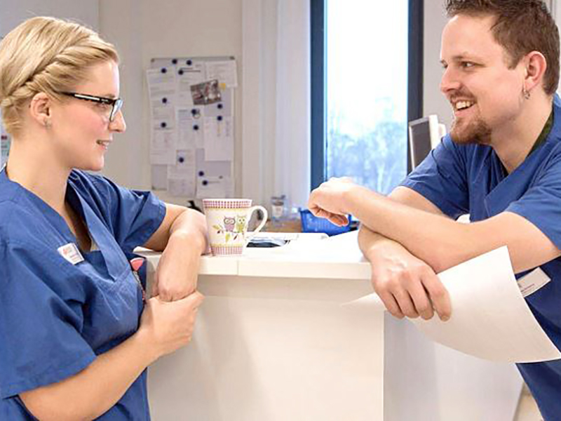 Corsi linguistici intensivi per medici e infermieri in Alto Adige.