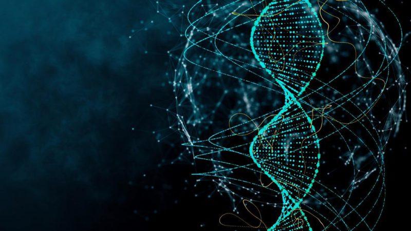 """La scoperta tutta femminile della """"forbice molecolare"""" per il DNA."""