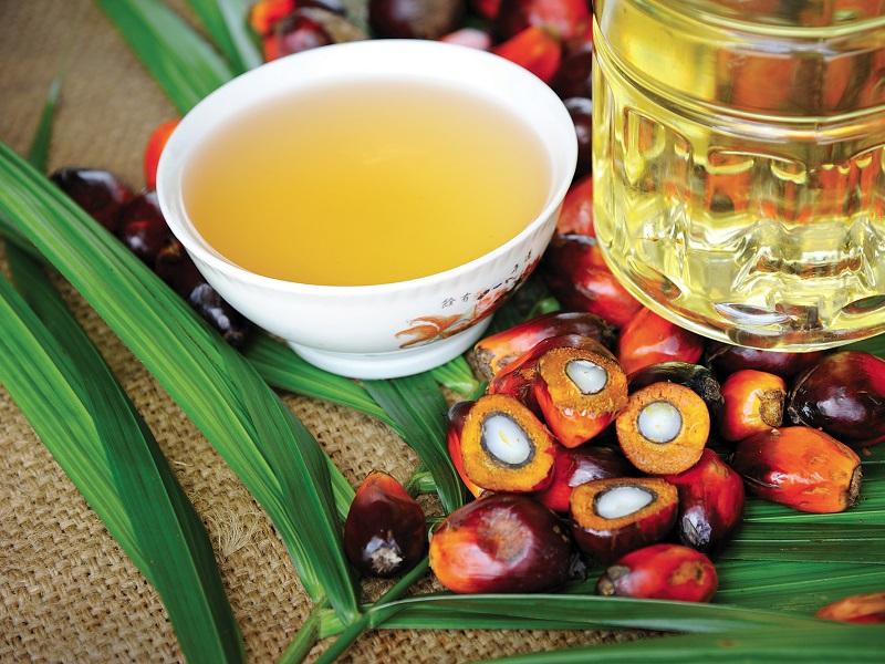 olio di palma