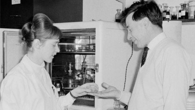 Donne nella scienza: Jean Purdy e la prima nascita in vitro.