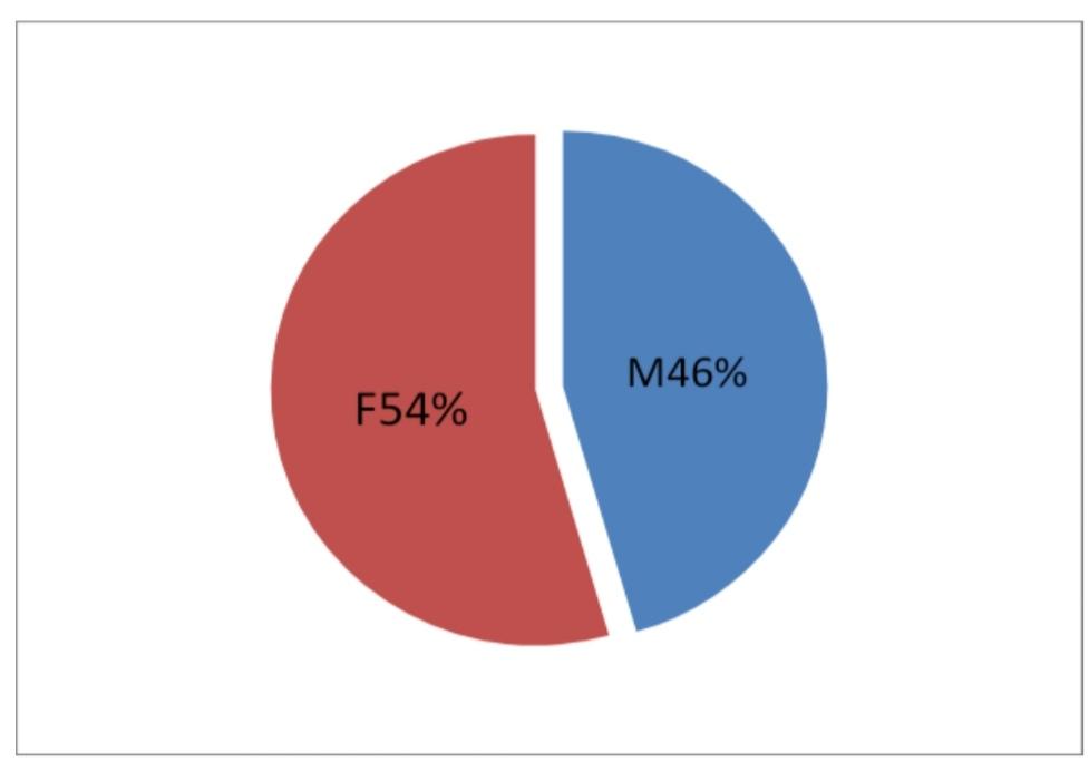 Grafico 2: Pazienti inclusi nello studio suddivisi per sesso.