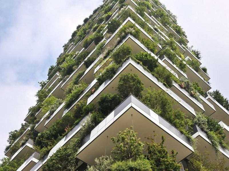 Ambiente: nasce la prima città foresta!