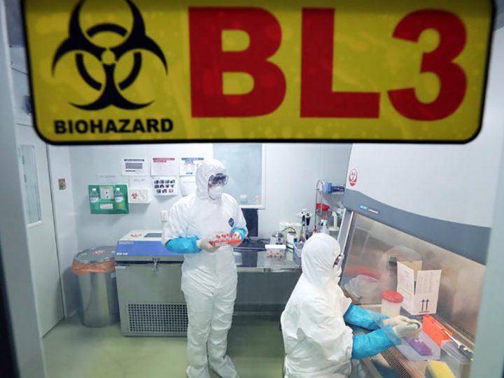 Coronavirus Cinese: continua a mietere vittime, ecco come comportarsi se si è in viaggio.