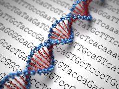 sequenza genetica dna gene